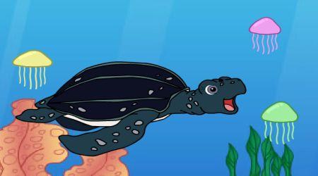 Screenshot - Tuga The Sea Turtle